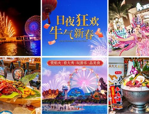 焰火秀、夜光巡游、88米摩天轮、海鲜美食节…日夜狂欢就来不夜城!
